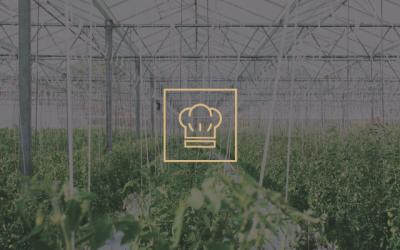 2019, el año del Food Tech